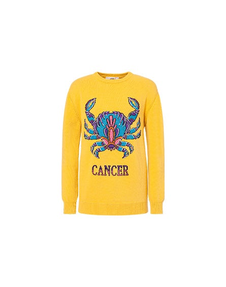 Love Me Starlight Cancer jumper