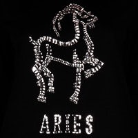 Starlight Aries